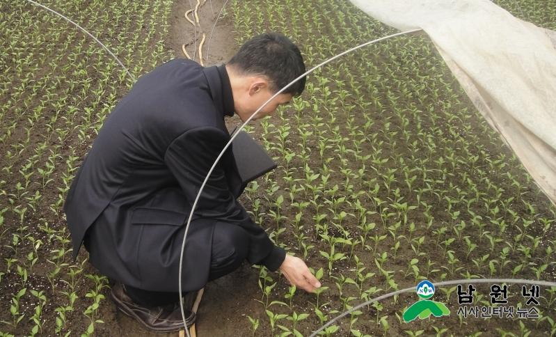 0210 현장지원과-고추농사 성공의 첫걸음, 건묘육성 (1).JPG