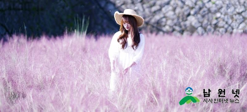 1007홍보전산과-대한민국에서 가장 따스한 핑크빛 물결)1.JPG